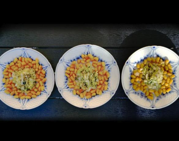 Græskar gnocchetti med squash og frisk hvidløg | Have til Bord